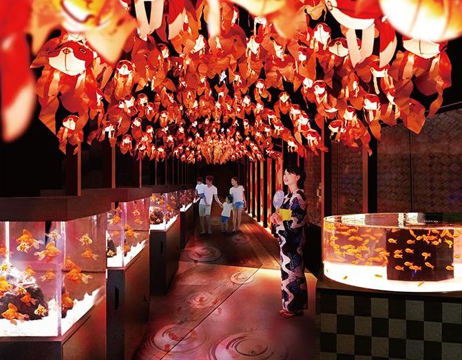 1000匹の金魚が幻想的な「お江戸の金魚ワンダーランド」が開催♡