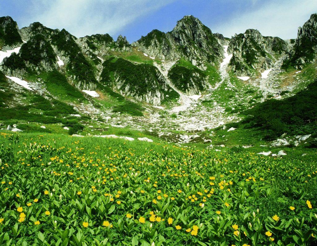 ロープウェイで行ける!まさに天空の別天地♡長野の「天空のお花畑」