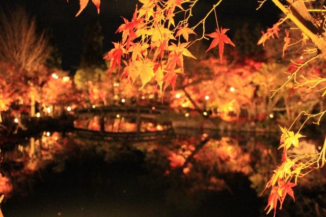 【2018京都紅葉ライトアップ】京都でも一際有名な紅葉の名所『永観堂』
