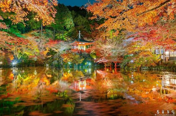 【2018年京都紅葉】今年の紅葉狩りはここで決まり!見頃とライトアップ情報まとめ